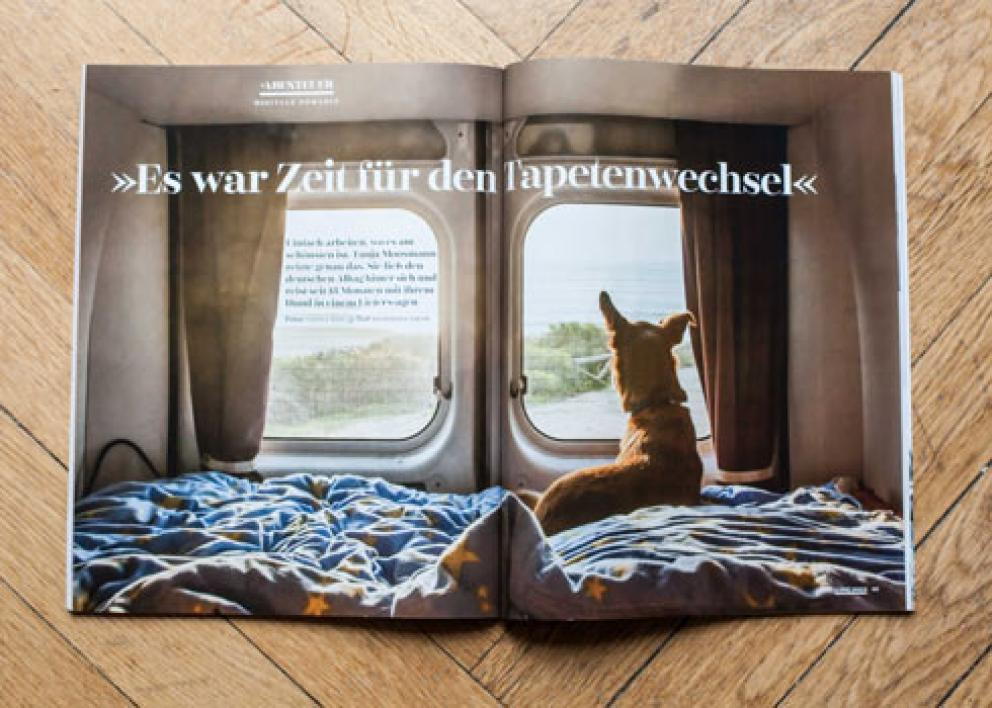 Dogs Magazin 01/2017